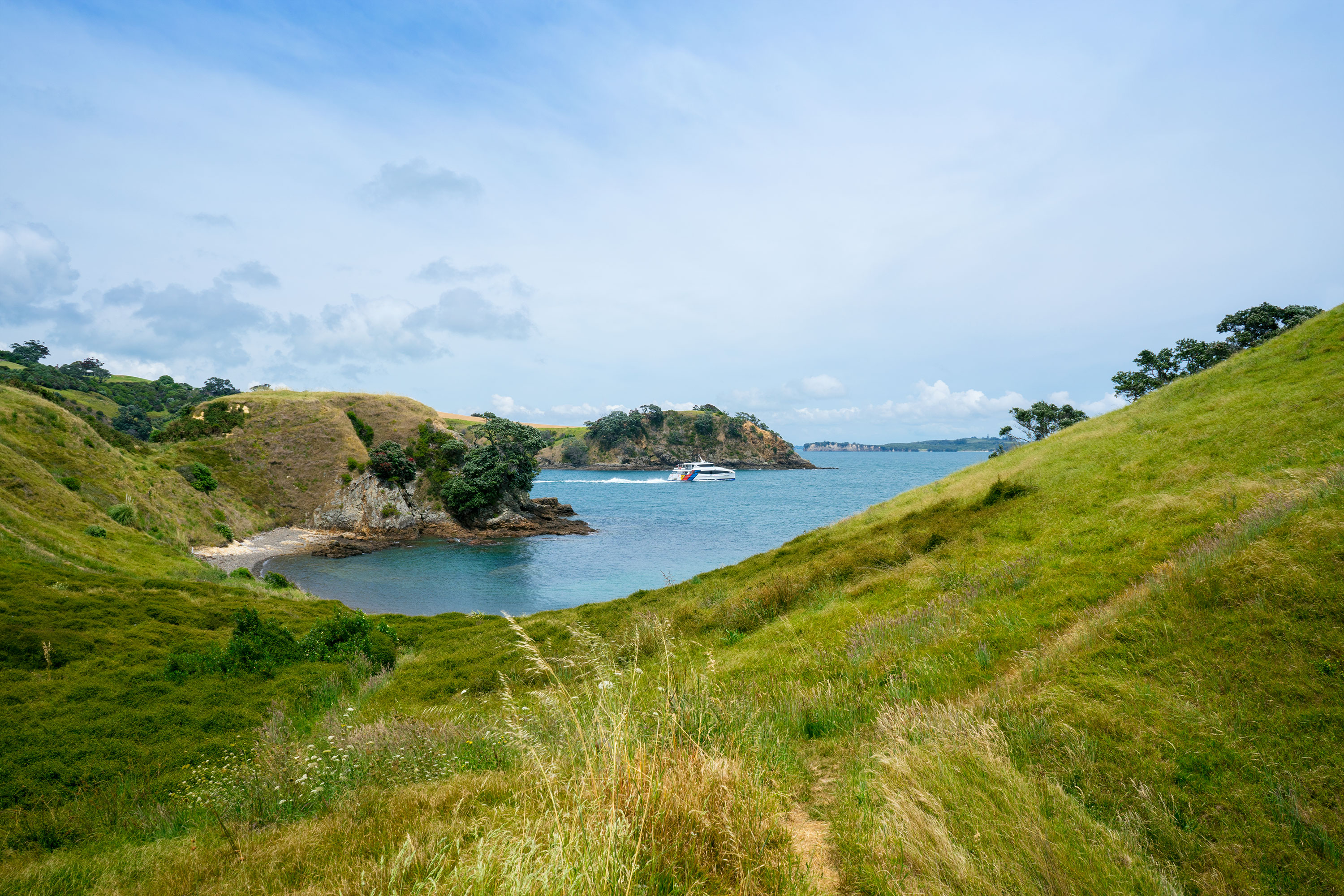48 Hours in Dreamy Waiheke