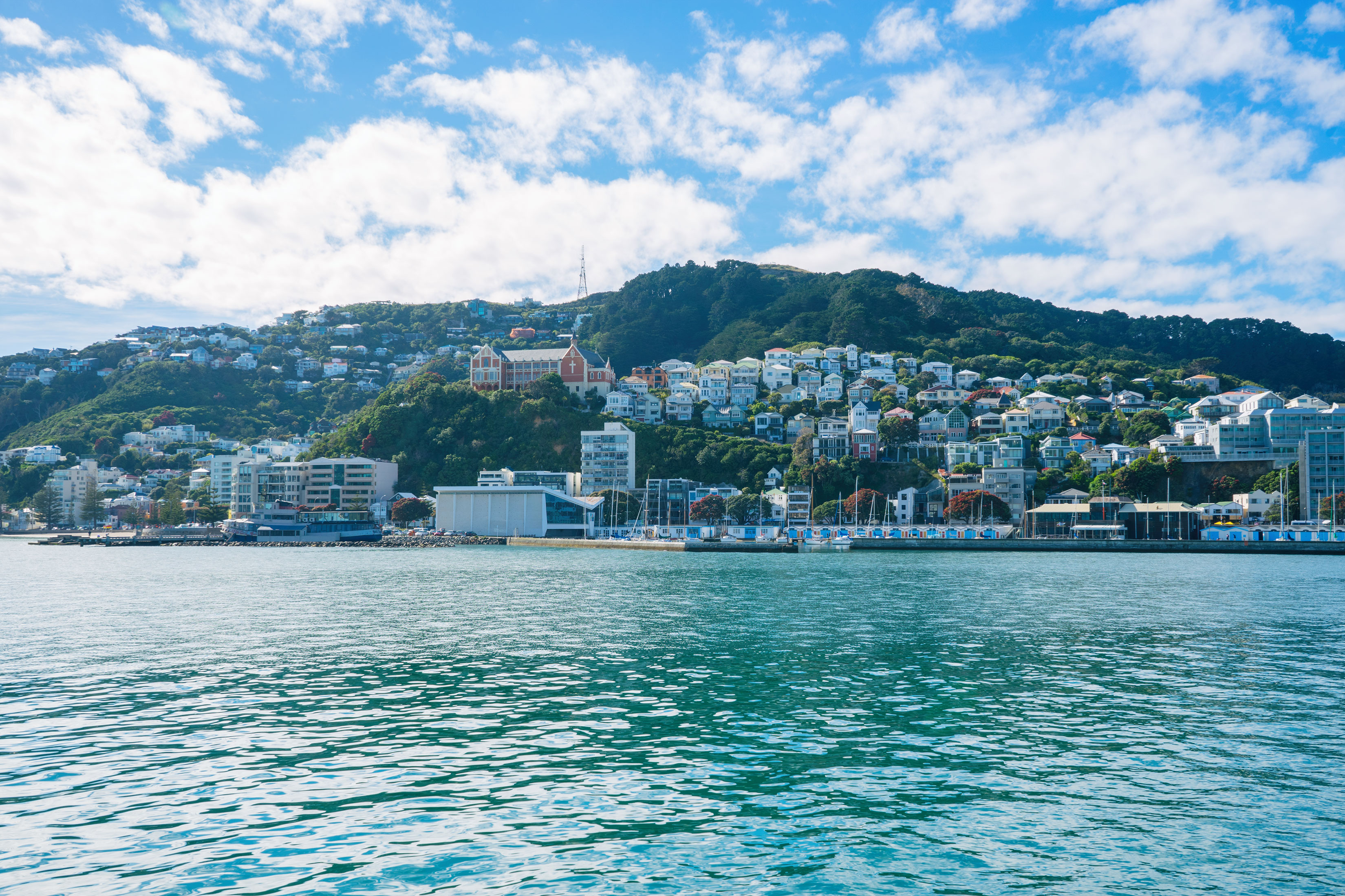Six Wonderful Things You Cannot Miss in Wellington, New Zealand's Charming Capital
