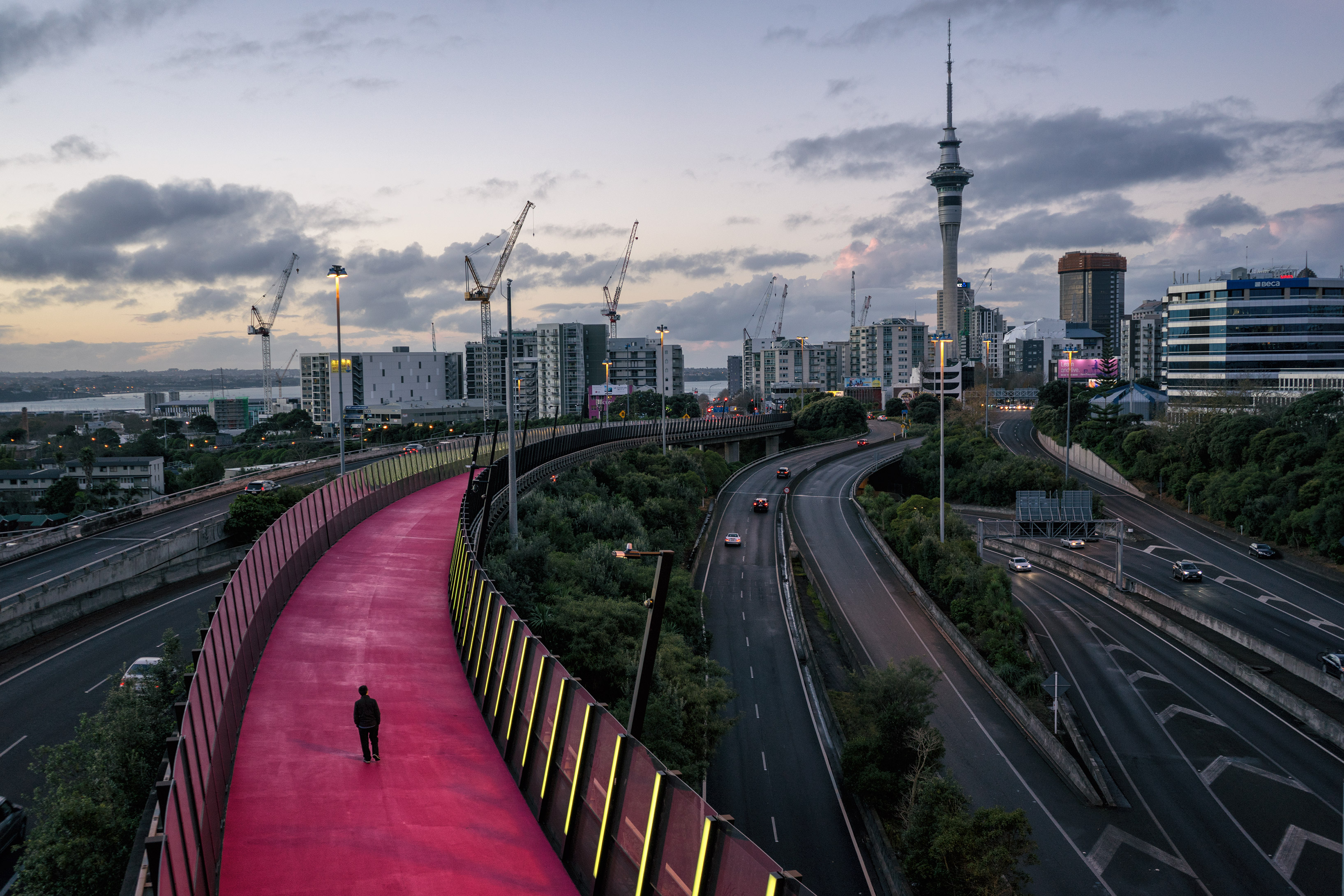 Your Quick Guide To Auckland, New Zealand's Largest City
